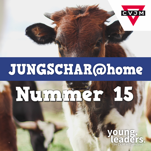 Jungschar at Home Paket 15
